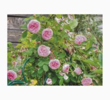 Pink Roses in the Garden 4 Kids Clothes