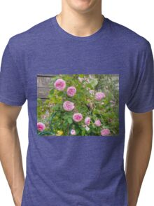 Pink Roses in the Garden 4 Tri-blend T-Shirt