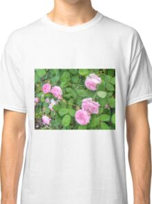 Pink Roses in the Garden 5 Classic T-Shirt