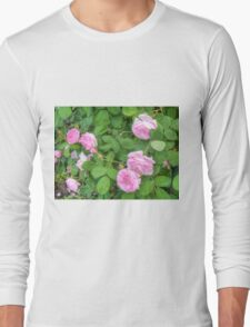 Pink Roses in the Garden 5 Long Sleeve T-Shirt