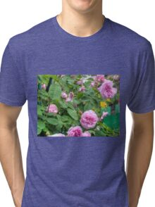 Pink Roses in the Garden 6 Tri-blend T-Shirt