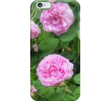 Pink Roses in the Garden 7 iPhone Case/Skin