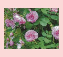 Pink Roses in the Garden 7 Kids Clothes