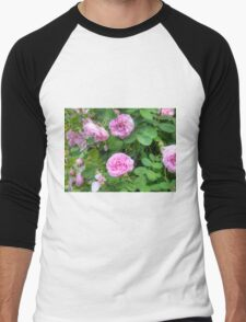 Pink Roses in the Garden 7 Men's Baseball ¾ T-Shirt