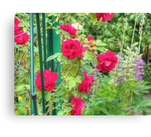 Red Climbing Roses Canvas Print
