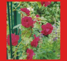 Red Climbing Roses Kids Clothes