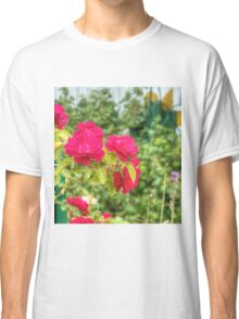 Red Climbing Roses 3 Classic T-Shirt