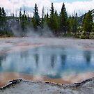 Yellowstone Reflection by AnnDixon