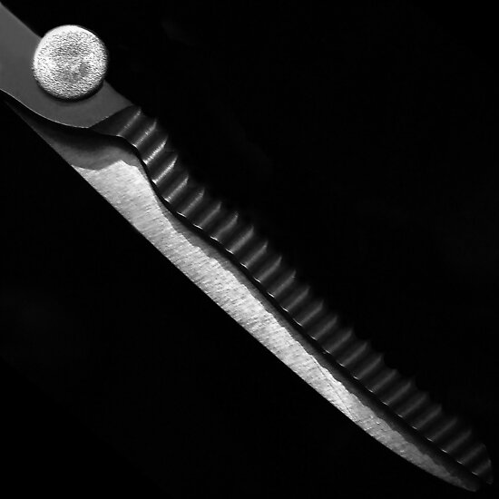 Scissors by Bluesrose