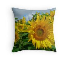 Transient Glory Throw Pillow