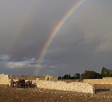 Rainbow over farm yard ruin near Yorketown , South Australia by Craig Watson