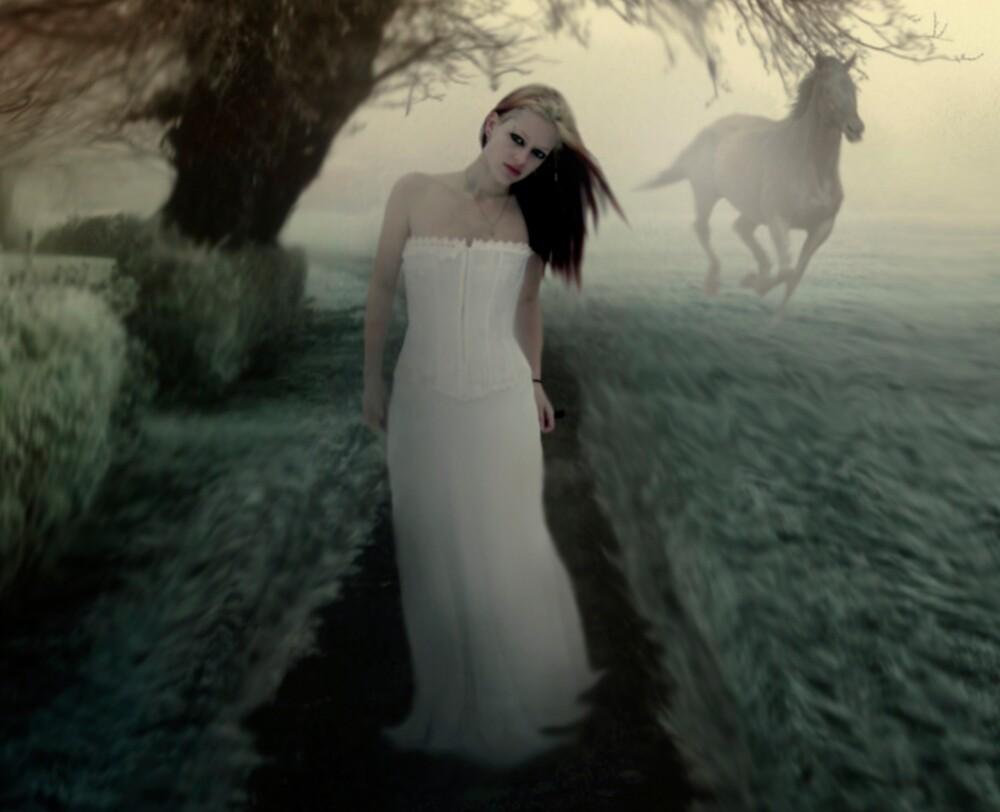 Through the Mist by Cliff Vestergaard