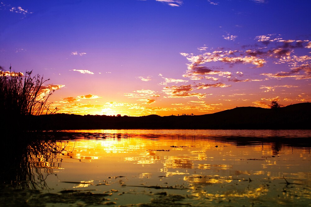Sunset at the Pond by Prescott Pym