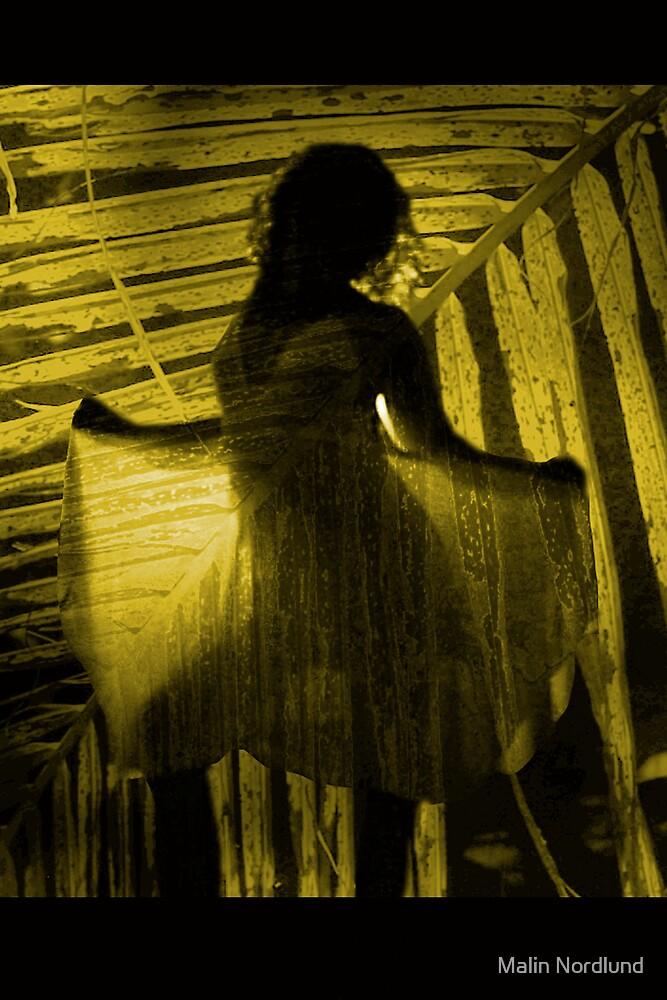 fairy by Malin Nordlund