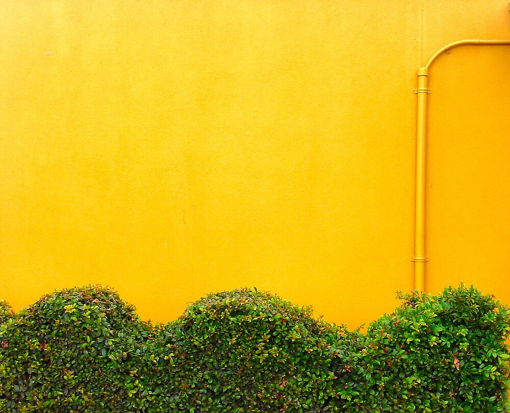yellow and green by Janet Leadbeater