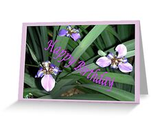 Purple Orchids Framed (B/Day Card)  Greeting Card