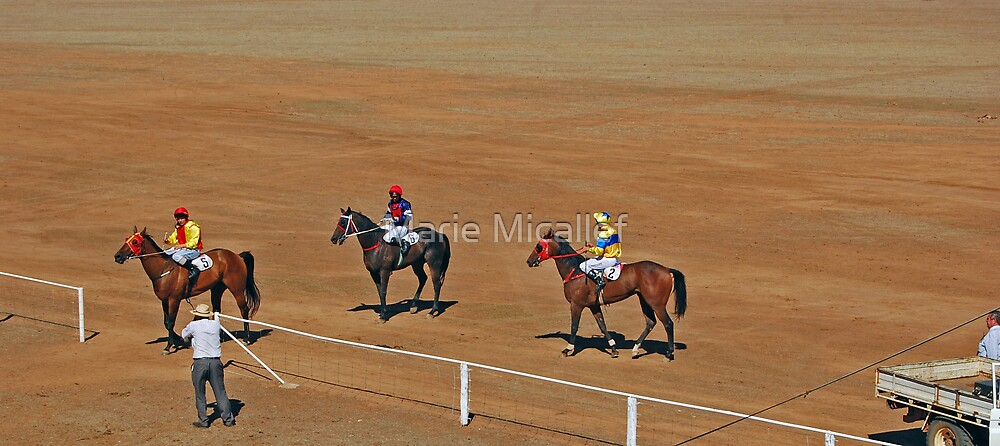 48th Picnic Race Meeting, Ardlethan by Shutterbug