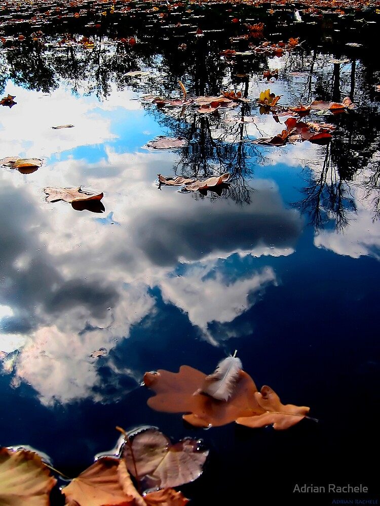 Cesky Krumlov pond by Adrian Rachele