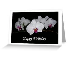 White Orchids Framed (Birthday Card) Greeting Card