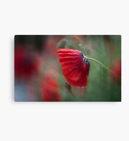 One minute of silence ...... Canvas Print