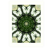Salad Spinner Art Print