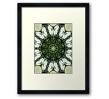 Salad Spinner Framed Print
