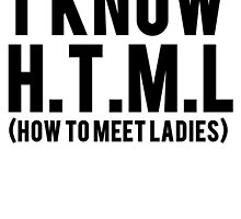 I Know HTML How To Meet Ladies by mralan