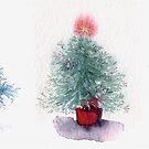 Three Christmas Trees by Helen Lush