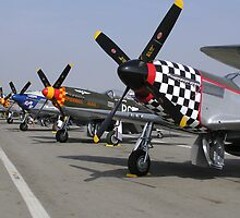 P51 Heaven by Jason Kerr
