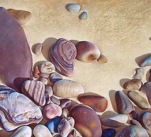 """Pallette of stones - Hallett Cove beach SA"" by Elena Kolotusha"
