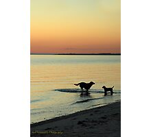 Friends at Sunset Photographic Print