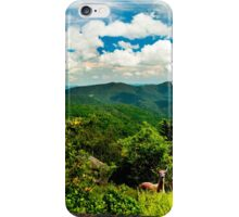 The Gravity of Love  iPhone Case/Skin