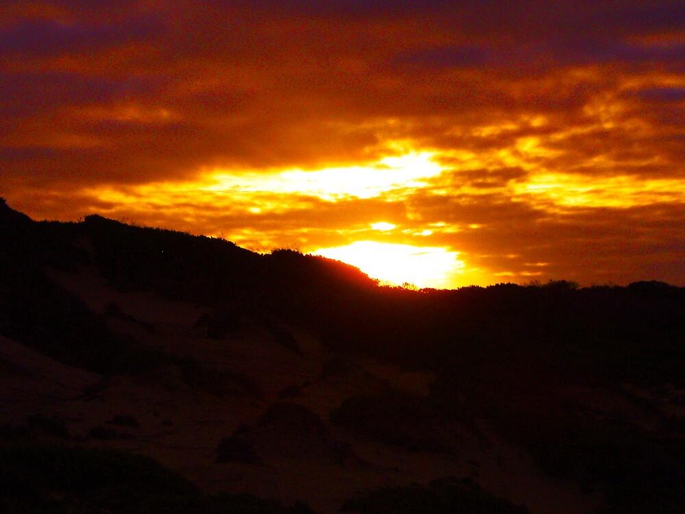 Sunrise Series - Morning Peninsula  by HamRadio