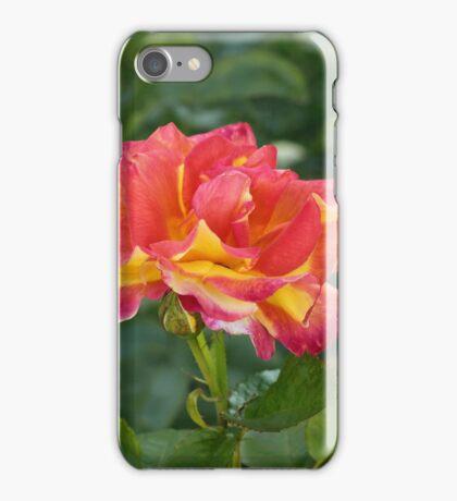 Autumn Roses iPhone Case/Skin