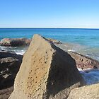 Rock at Whale Beach by justineb
