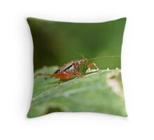 Grasshopper 13 Throw Pillow