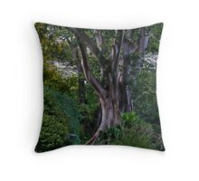 Enchantment Throw Pillow