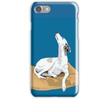 North is that way iPhone Case/Skin