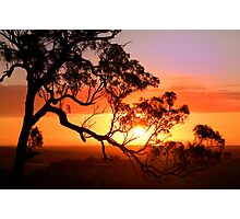 Sunset over Lysterfield Photographic Print