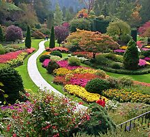 Butchart Gardens  VICTORIA BC in the FALL ........ by AnnDixon