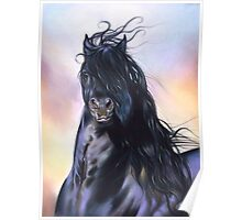 Friesian spirit Poster