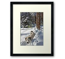 Emma - I Could Almost Fall Asleep Standing Up Framed Print