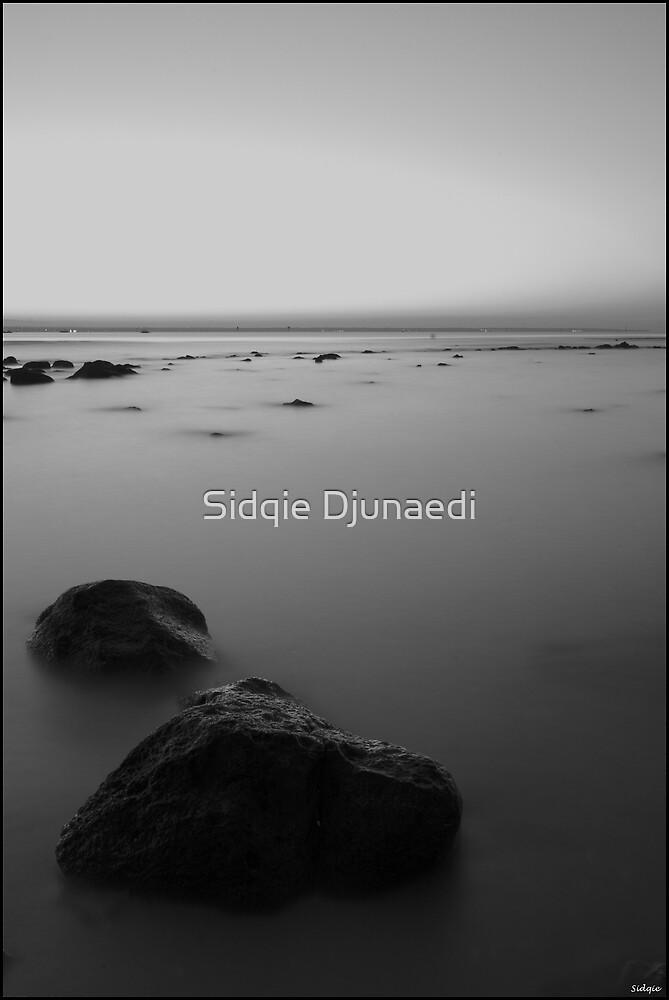 Misty by Sidqie Djunaedi