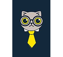 Geeky Grey Kitty Cat Photographic Print