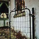 Old Iron Gate by debidabble