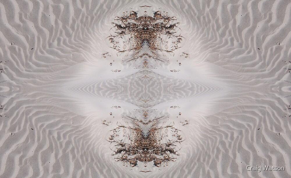 Beach Sand Kaleidoscope #1 by Craig Watson