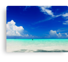 Beautiful one day Canvas Print