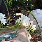 Secret Garden by Queeni