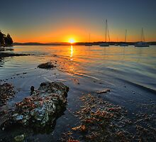 Lake Macquarie Sunset by Mark Snelson
