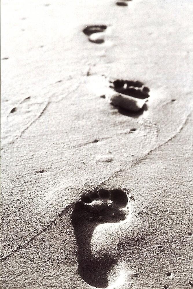 Malibu Feet by Jessie Evans